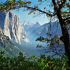 Yosemite Day by Mark Ramstead