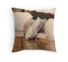 Tortoise Throw Pillow