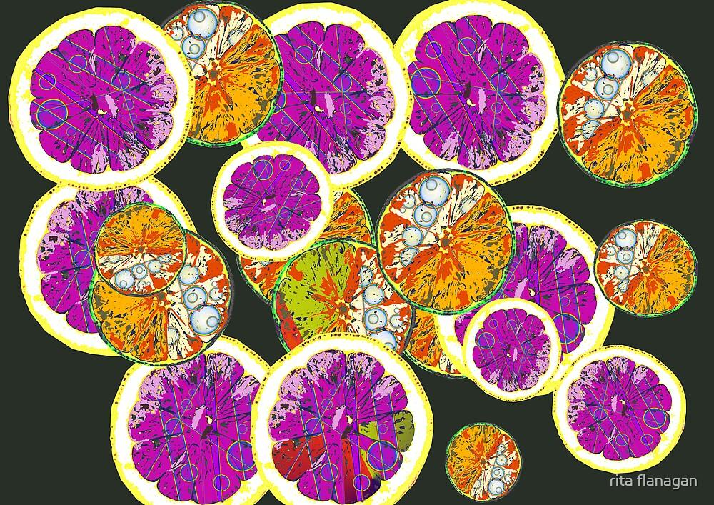 lemons and limes  by rita flanagan