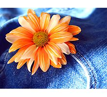 Blue Jeans and Daisy's!!!! Photographic Print