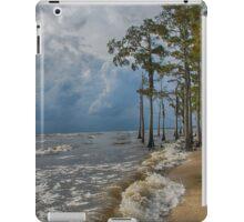 Cypress trees on the beach iPad Case/Skin