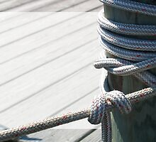 Dock Mooring with Text Box by digerati