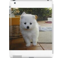 Samoyed #11 iPad Case/Skin