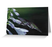 Hummingbird 3 Greeting Card