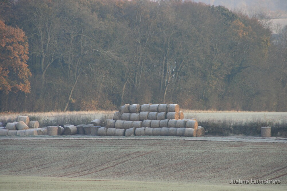 Frosty Bales by Justine Humphries