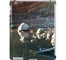 Sunny Shiny Shoreline  iPad Case/Skin