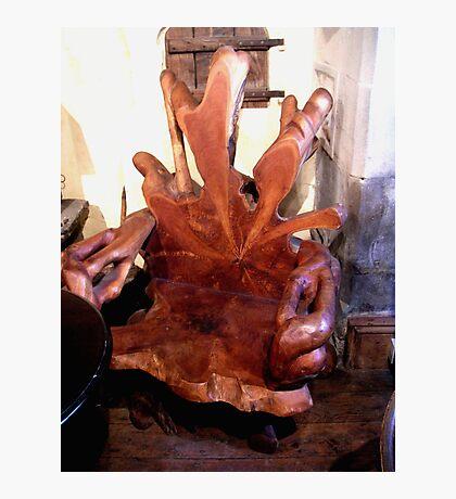 Tree Chair Photographic Print
