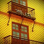 Barcelona Balconies by Rosemary Sobiera