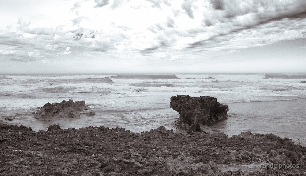Another Gray Day by randmphotos