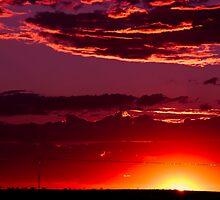 Glowing Beauty by Craig Hender