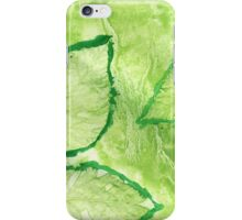 Green Painted Texture with Leaves iPhone Case/Skin