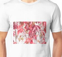 Jelly Time Unisex T-Shirt