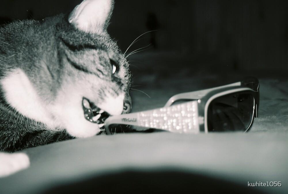 Versace Kitty by kwhite1056