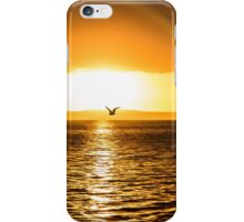 Wellington Point Sunrise iPhone Case/Skin