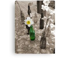 Bottles of Daffodils Canvas Print