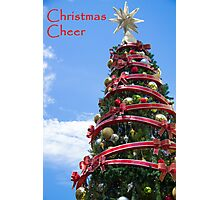 Christmas Cheer Photographic Print