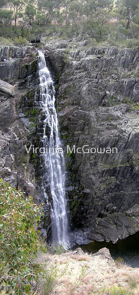 Waterfall Walcha # 2       Apsley Falls by Virginia McGowan