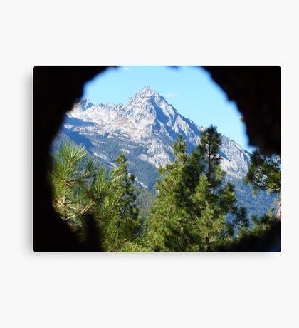 Through a Lens Canvas Print
