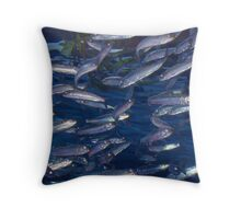 School Throw Pillow