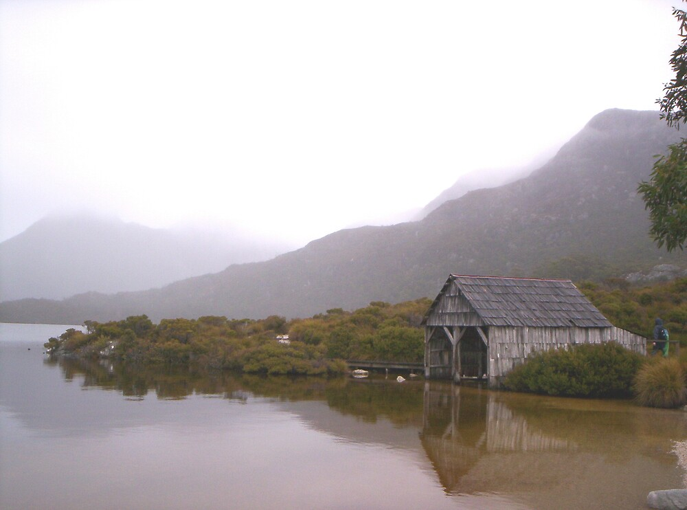 soft rainy day at Cradle Mt, Tasmania by gaylene