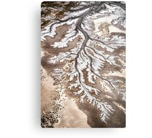 River Branches Metal Print