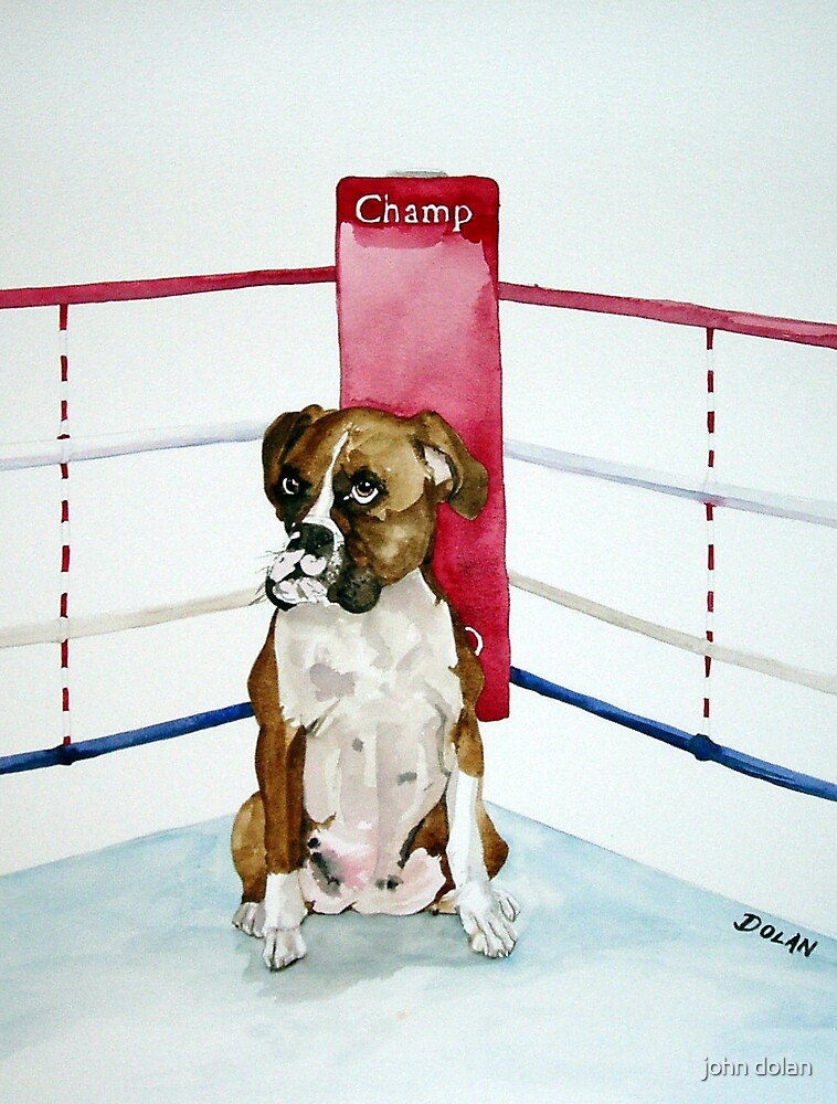 The Champ by john dolan