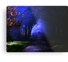 Into the shadows Metal Print