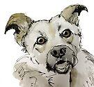 doggie by pobsb