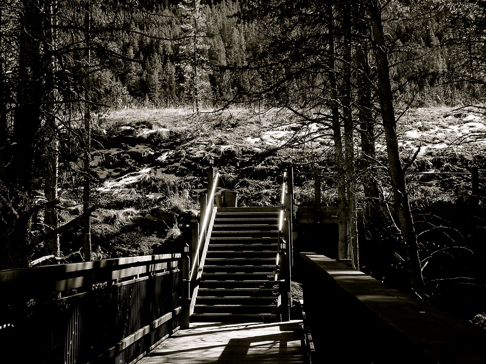 Stairway to Heaven by diongillard