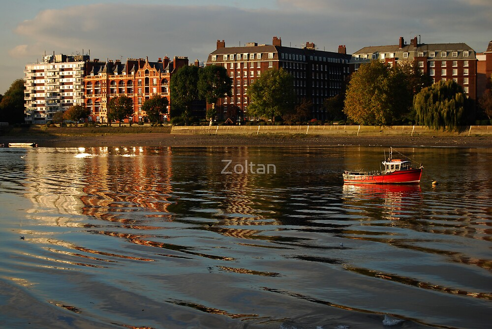 Wandsworth Park by Zoltan