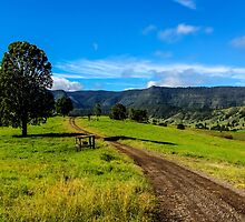 The road less travelled by Brent Randall
