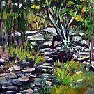 creek bed by Paul  Milburn
