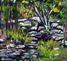 creek bed by Paul  Milburn