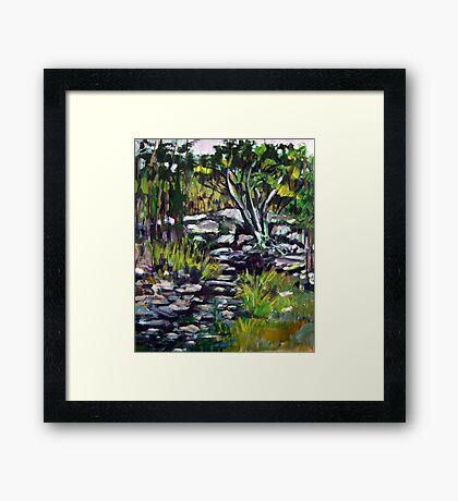 creek bed Framed Print
