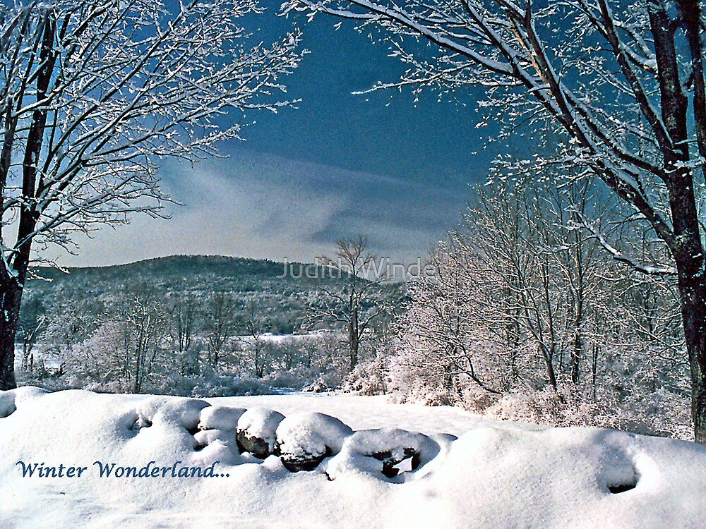 Winter Wonderland holiday card by Judith Winde