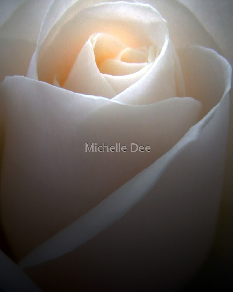 The heart of the rose by michelleduerden