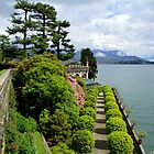 The spring on the lake Maggiore by annalisa bianchetti