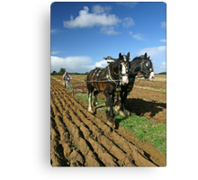 Horses Ploughing Canvas Print