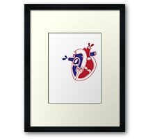 An illustration of a working heart Framed Print