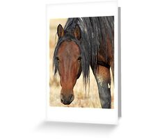 Placid and Powerful Greeting Card