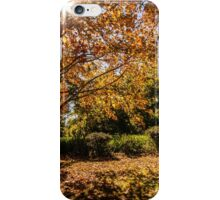 Autumn Tones iPhone Case/Skin