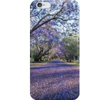 The purple carpet iPhone Case/Skin