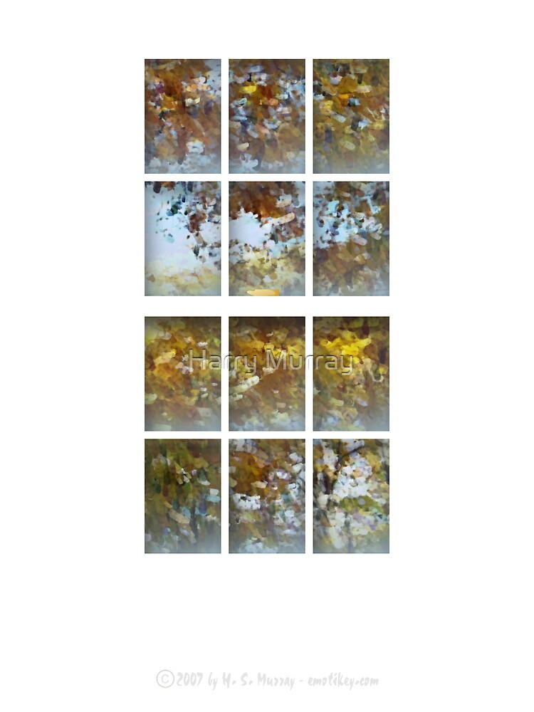 Thru my window ... Autumn Leaves by Harry Murray
