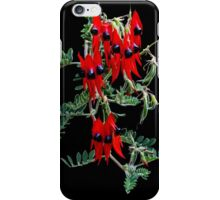 Sturt's Desert Pea iPhone Case/Skin