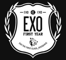 Exo First Year by Aprilio
