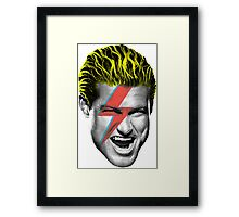 Dolph Ziggy Framed Print