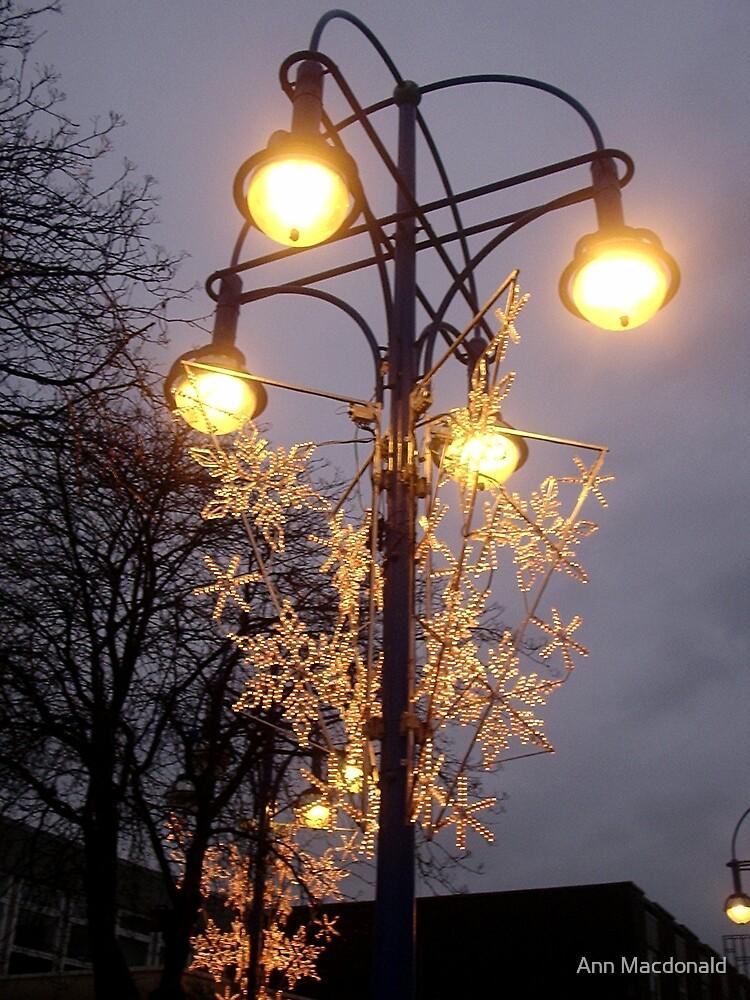 xmas lights by Ann Macdonald