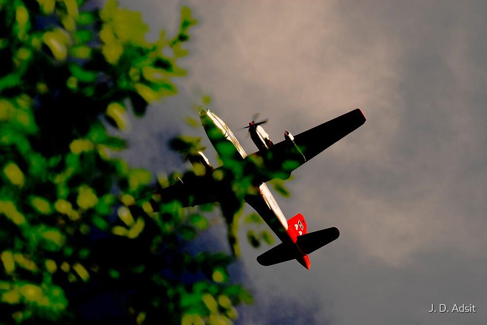 Plane Surreality by J. D. Adsit