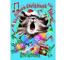 Christmas Carol Kitty Photographic Print