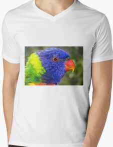 Rainbow Mens V-Neck T-Shirt